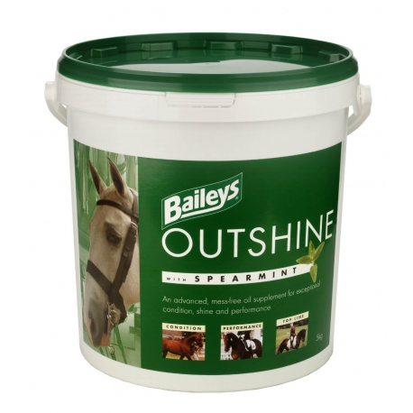 OSS 5kg.Outshine with spearmint